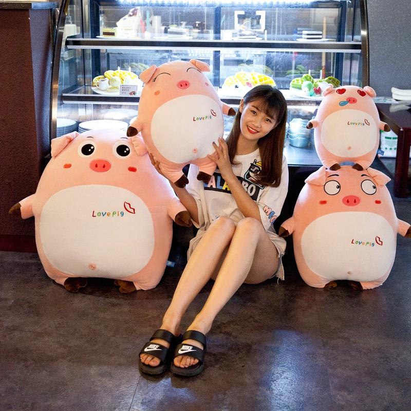 Gấu bông - Lợn Bông Cute - Quà tặng Quà sinh nhật ý nghĩa (khách chat với shop nếu muốn...