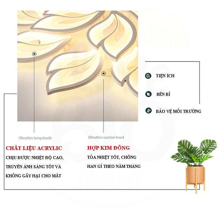 Đèn Ốp Trần Trang Trí – Đèn Âm Trần Trang Trí Phòng Khách, Gồm 3 Chế Độ Ánh Sáng, Có Điều Khiển Từ Xa Tiện Dụng – BIO117
