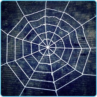combo 3 mạng nhện halloween