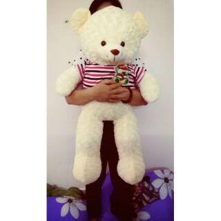 Gấu teddy khổ vải 1m