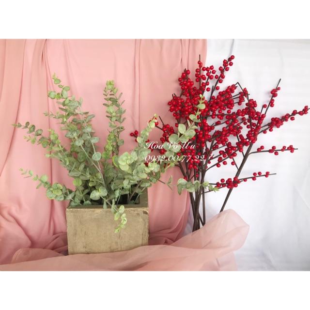 Hạt làm đào đông đỏ loại đẹp - 22640427 , 7308097094 , 322_7308097094 , 250000 , Hat-lam-dao-dong-do-loai-dep-322_7308097094 , shopee.vn , Hạt làm đào đông đỏ loại đẹp