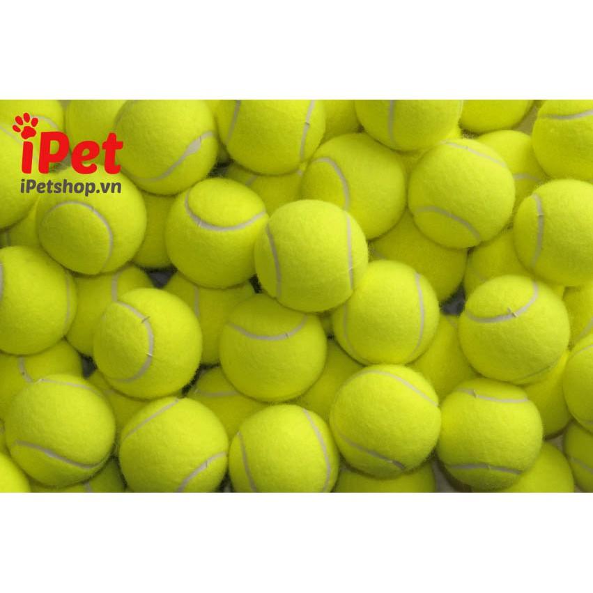 Đồ chơi banh tennis cho chó mèo - iPet Shop