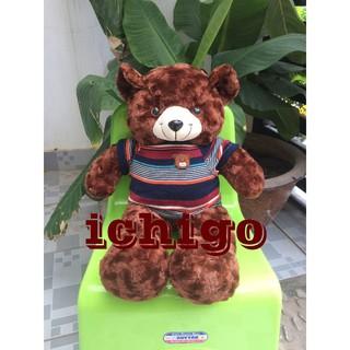 Gấu Bông Teddy Cao Cấp Size 50Cm Hàng Vnxk màu nâu