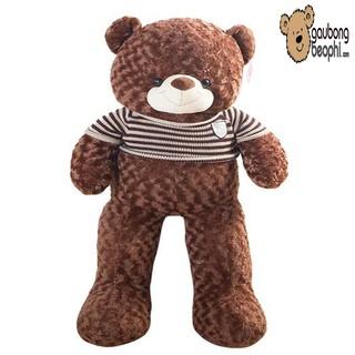 [ RẺ VÔ ĐỊCH ] Gấu bông teddy áo len cao cấp màu socola khổ vải 1m6 chiều cao thật 1m4