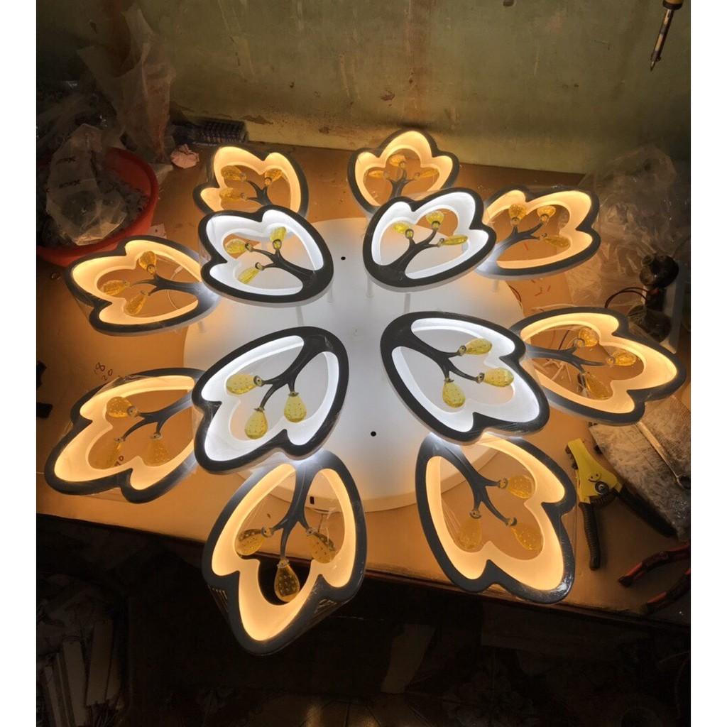 Đèn Ốp Trần Led Hoa Mai 12 Cánh-Có Điều Khiển-Bảo Hành 2 Năm