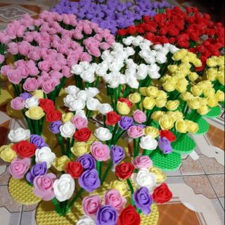 20 khóm hoa hồng- hoa hồng- đồ dùng mầm non