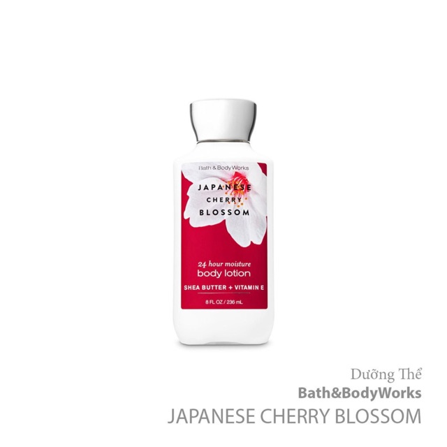 Dưỡng thể Bath and Body Works Body - Japanese Cherry Blossom, 236ml