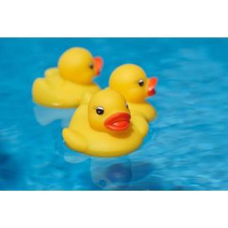 # Đàn vịt thả bồn tắm cho bé #