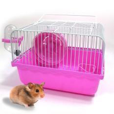 Lồng Chuột Hams Hamster