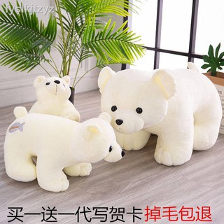 Gấu Trắng Nhồi Bông Dễ Thương