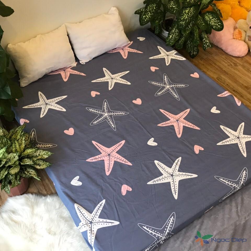 Ga chống thấm cotton trải giường nằm trực tiếp 2 trong 1 nhiều màu (được chọn mẫu)