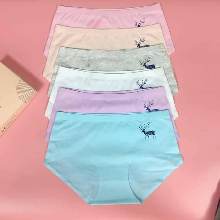 COMBO 10 chiếc quần cotton hình hươu nữ đẹp và chất