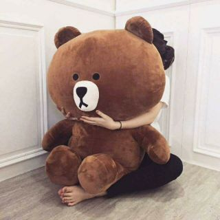Gấu brown đủ size