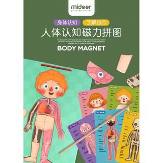 Mideer 3D Magnetic Human Body Puzzle Wooden (Bộ sản phẩm 84 pcs nhận thức cơ thể của bé hàng chính hãng Mideer)
