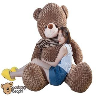 [HOT] Gấu Teddy Màu Hạt Dẻ Khổ Vải 1m2
