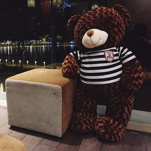 Gấu Bông Teddy Cao Cấp Khổ Vải 80cm Cao 60cm Màu Nâu Hàng VNXK – Tặng Thiệp Mừng 3D – TD60