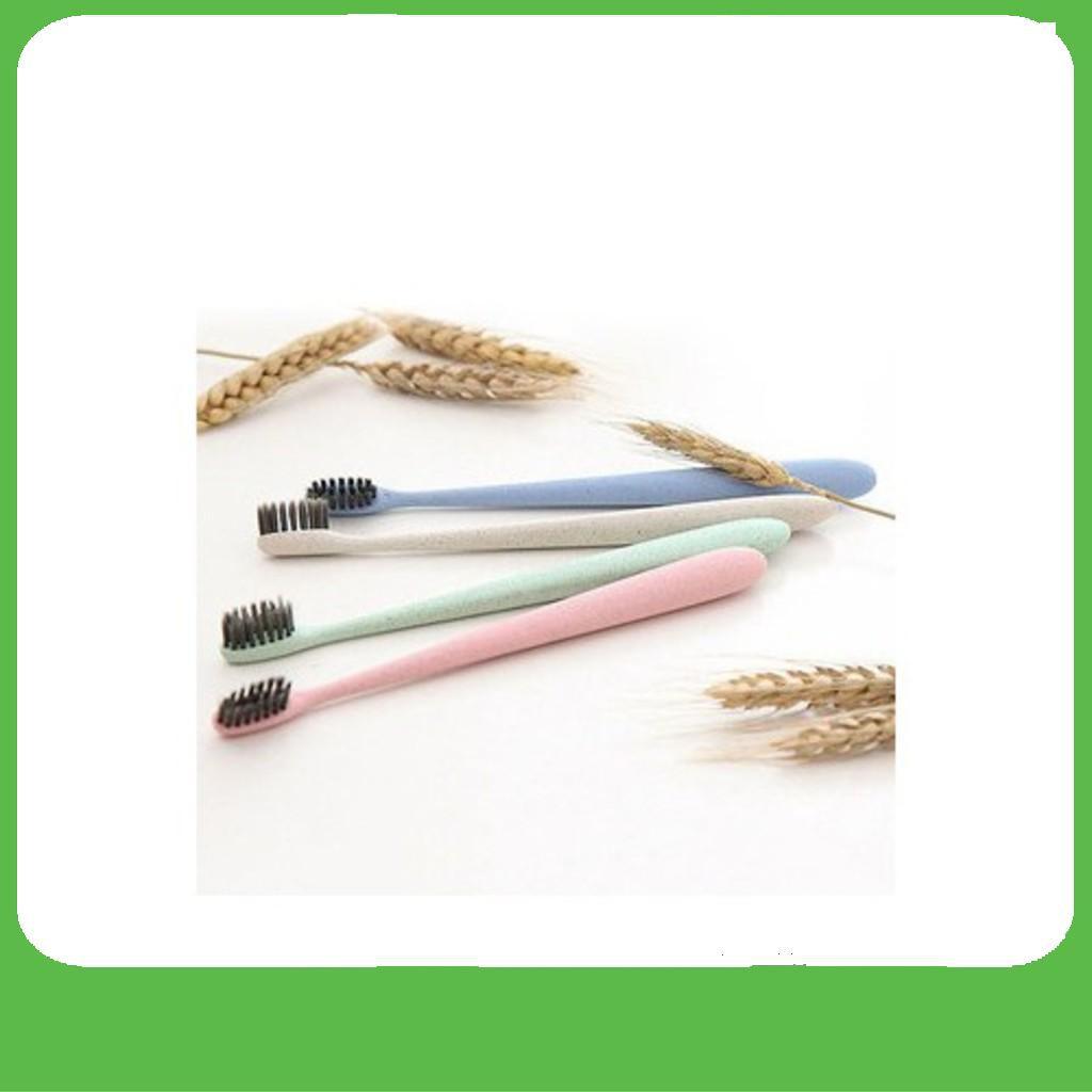 [BÁN CHẠY]  Set 50 bàn chải đánh răng tự nhựa lúa mạch cao cấp