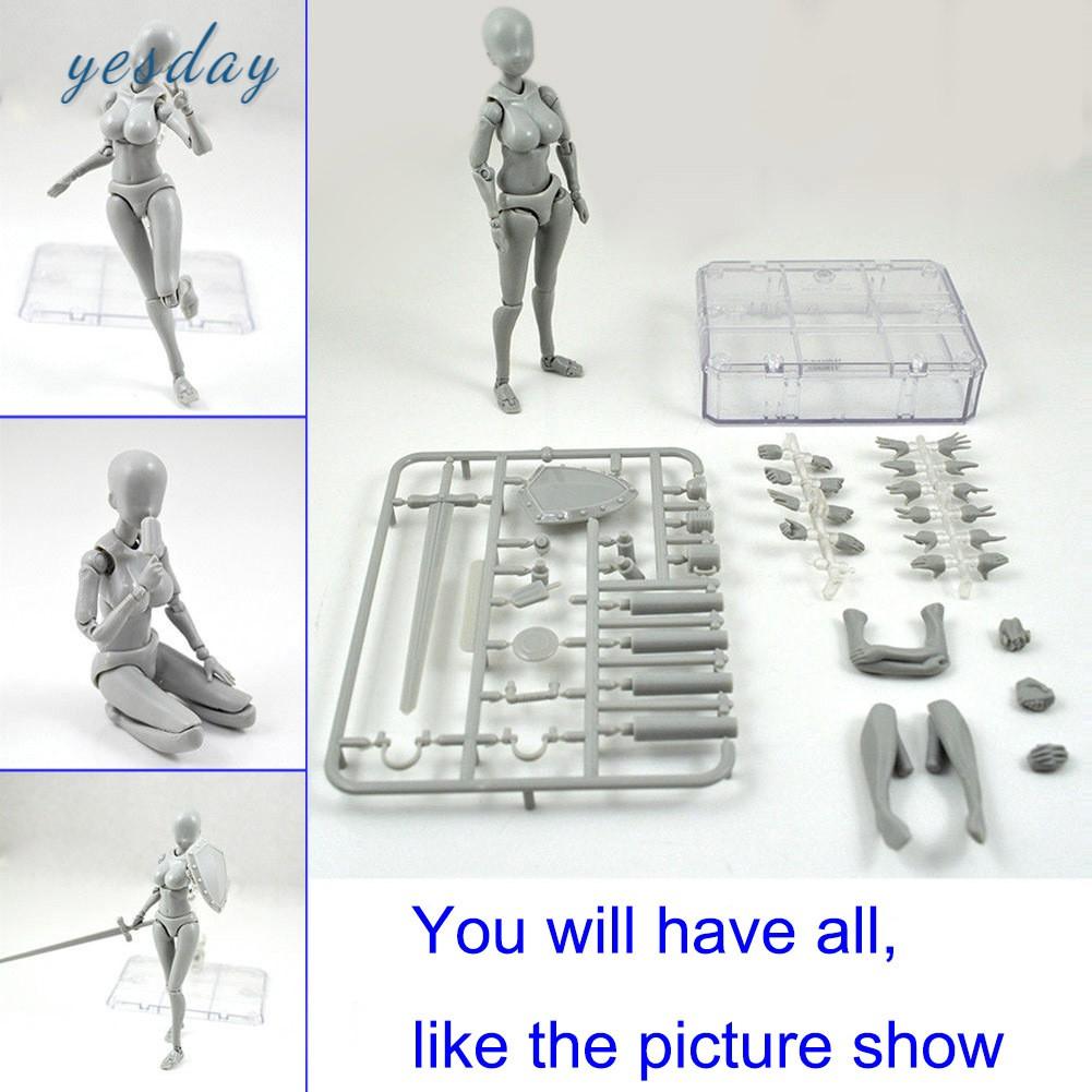 Mô Hình Cơ Thể Người Bằng Nhựa Pvc 2.0