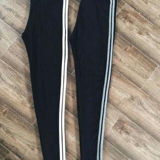 Legging sọc