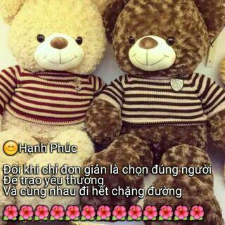 Gấu bông teddy đáng yêu 1m khổ vải 1m2