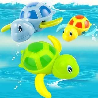 Rùa bơi trong nước hot