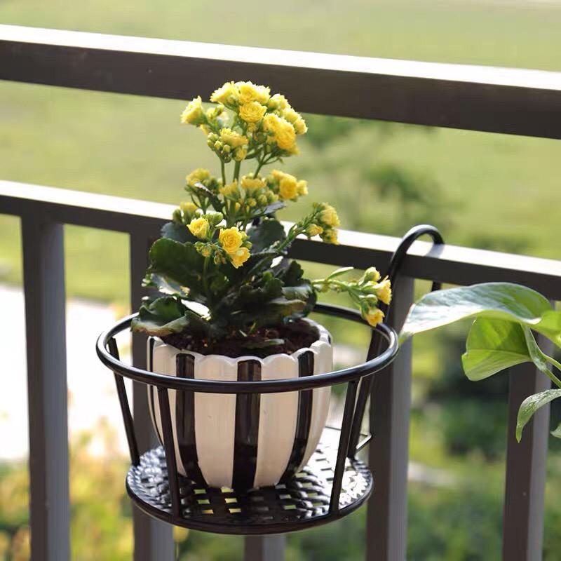 Giá Sắt Treo Để Chậu Hoa, Chậu Cây Cảnh Ở Ban Công Chung Cư (HOT)