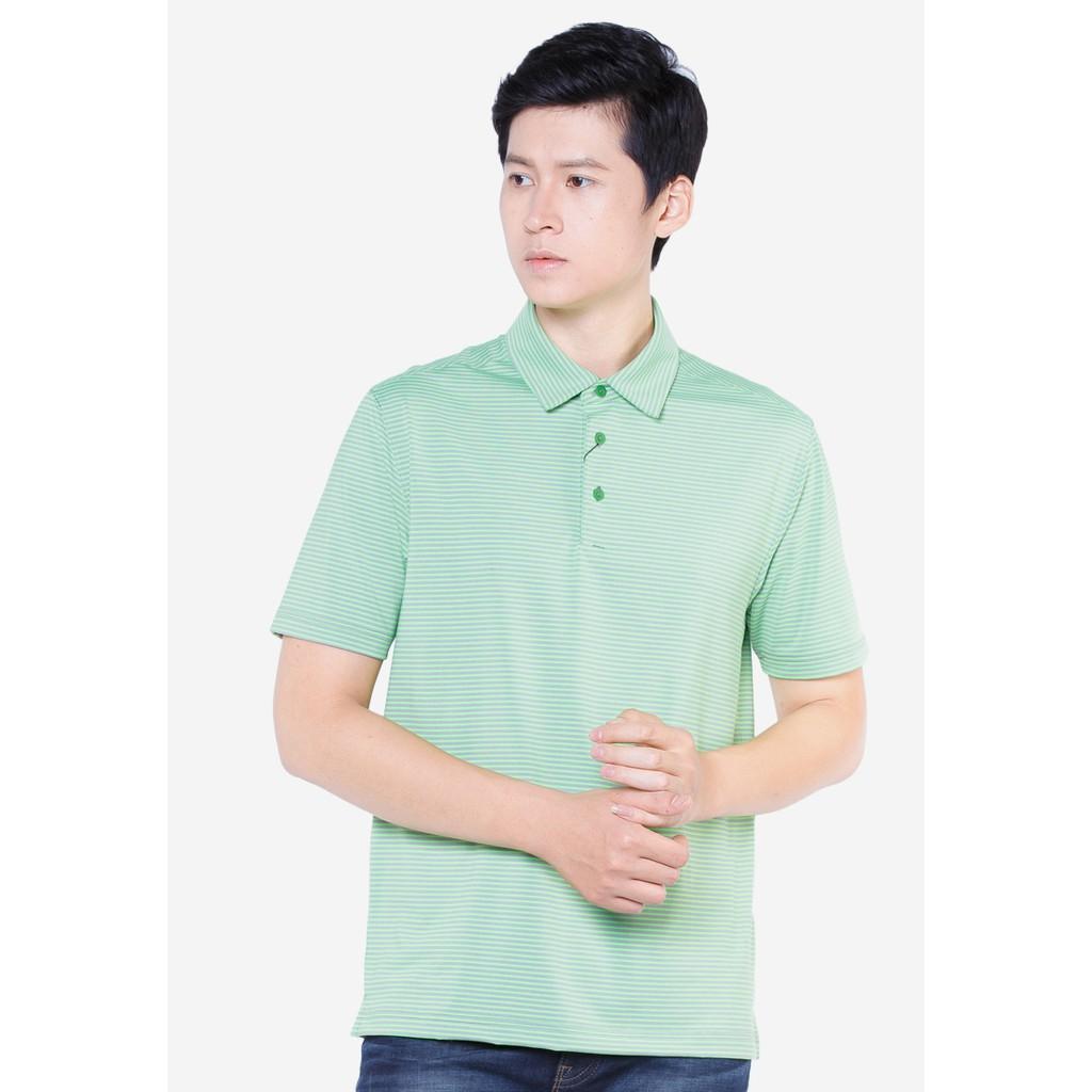 Áo phông polo cộc tay kẻ xanh ngọc APC017