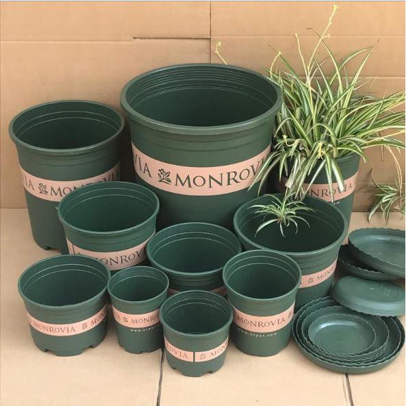 Chậu MONROVIA Size 0,5 (gồm Đĩa Lót) - Chậu nhựa trồng cây chuyên để trồng các loại hoa kiểng, đặc biệt là Sen đá