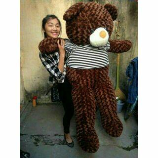 Gấu bông teddy đáng yêu 1m4 khổ vải 1m6