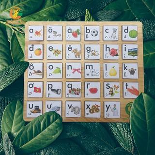 Bảng chữ cái Tiếng Việt Goldcat (MSP: B2)