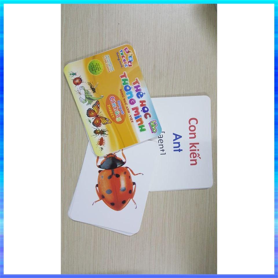 Bộ thẻ học thông minh 12 chủ đề cho bé loại to tặng kèm bộ chữ cái và số (270 thẻ) đồ dùng cho trẻ em - 22335953 , 5302653645 , 322_5302653645 , 305000 , Bo-the-hoc-thong-minh-12-chu-de-cho-be-loai-to-tang-kem-bo-chu-cai-va-so-270-the-do-dung-cho-tre-em-322_5302653645 , shopee.vn , Bộ thẻ học thông minh 12 chủ đề cho bé loại to tặng kèm bộ chữ cái và s