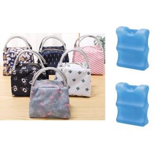 Combo túi giữ nhiệt họa tiết cao cấp đá khô bảo quản lạnh