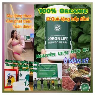 Ngũ Cốc Bà Bầu Pregnlife (500gr), Ngũ Cốc Lợi Sữa Sau Sinh, Cung cấp dinh dưỡng cho bé phát triển toàn diện [CHÍNH HÃNG]