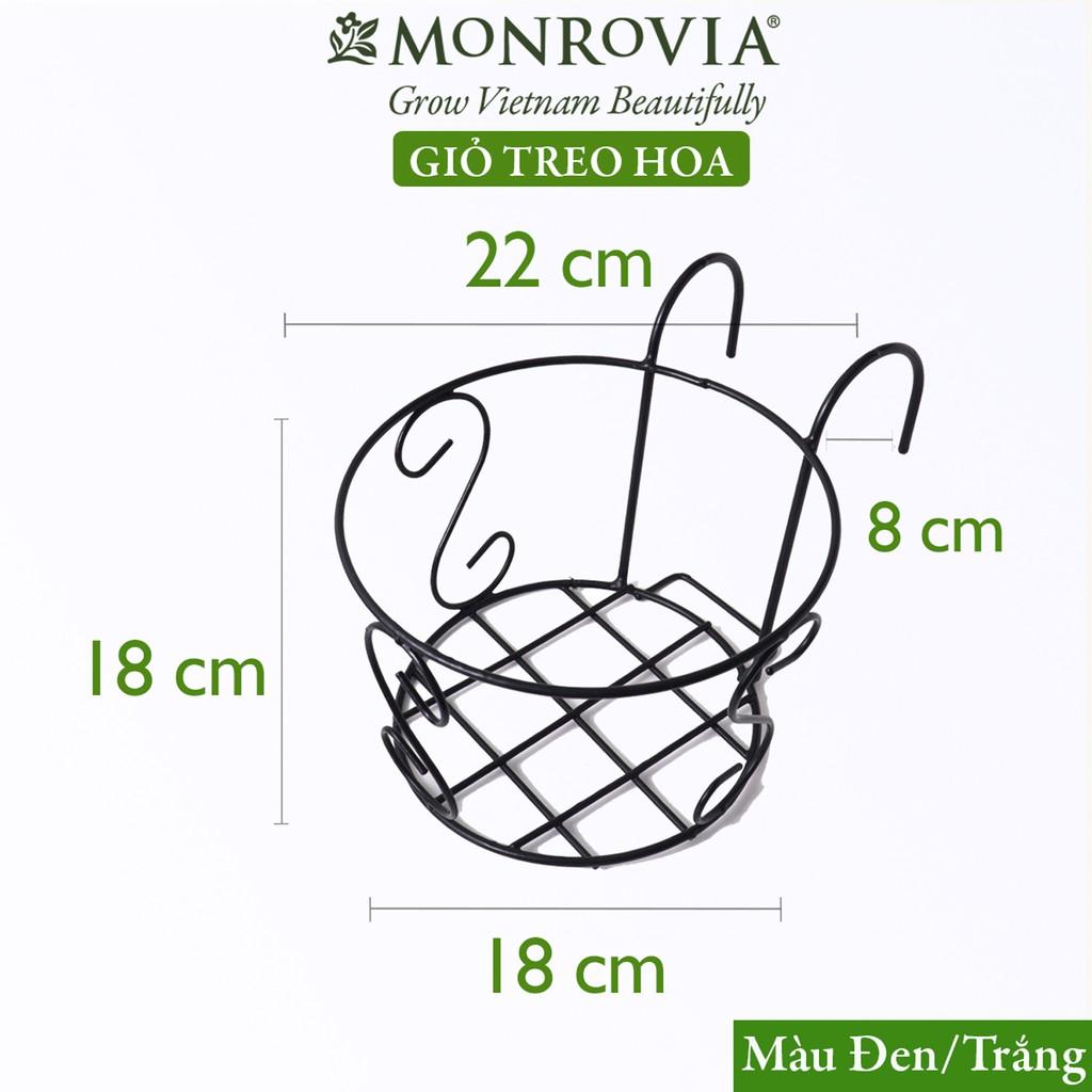 Giỏ treo hoa ban công MONROVIA, giỏ móc sắt treo chậu hoa ban công, khung thép siêu bền, sơn tĩnh điện, size lớn 22 cm