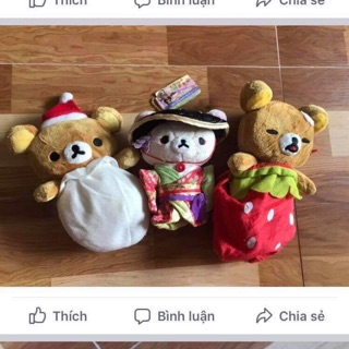 Combo gấu Rila