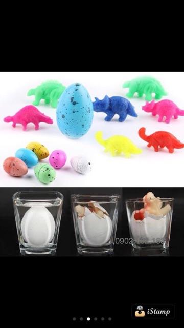 Trứng khủng long diệu kì hàng UK cho bé, ngâm nước trứng nở ra khủng long con đáng yêu
