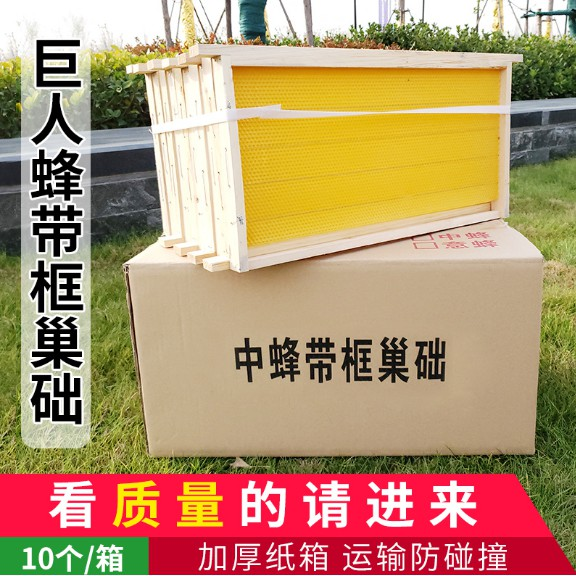 lồng nuôi ong chúa kèm 10 ống gỗ - 22355305 , 5000027727 , 322_5000027727 , 537000 , long-nuoi-ong-chua-kem-10-ong-go-322_5000027727 , shopee.vn , lồng nuôi ong chúa kèm 10 ống gỗ