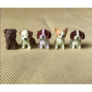 cún mini
