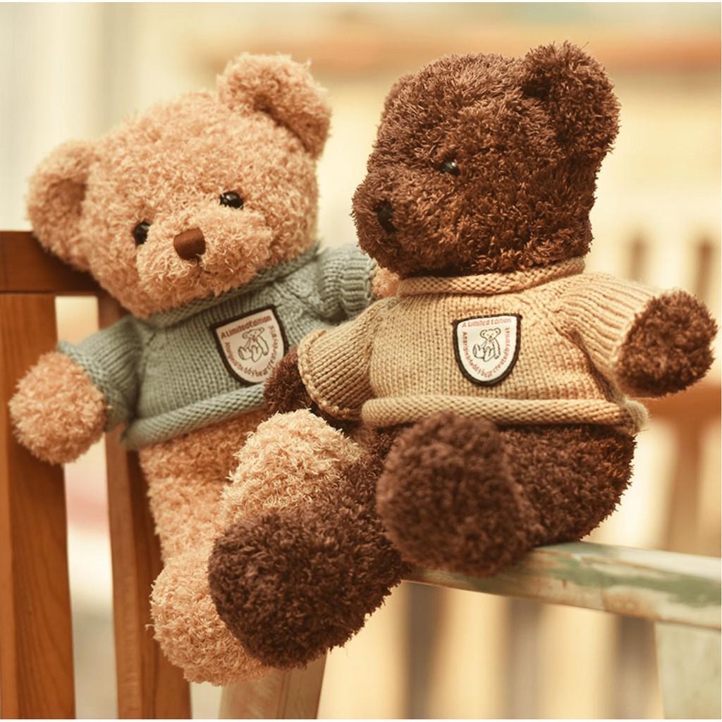 Gấu Bông Teddy Head Tales đẹp cỡ nhỏ 40cm, nhồi bông gòn cao cấp, lông xoắn mịn, an toàn cho bé.
