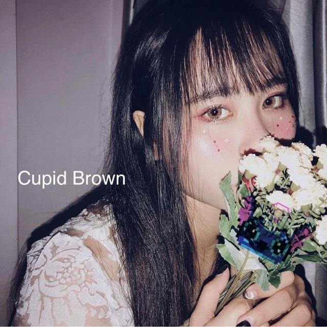 Cupid brown lens Angel Eye 0 độ