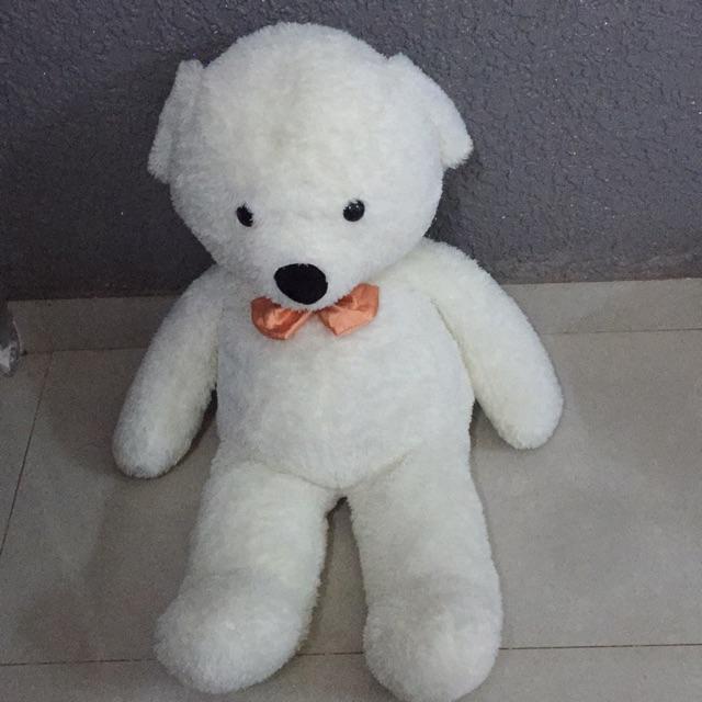 Gấu teddy cao cấp 1,2m