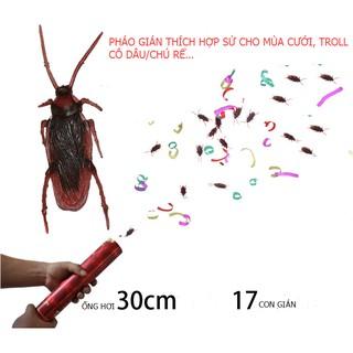 PHÁO HOA GIÁN