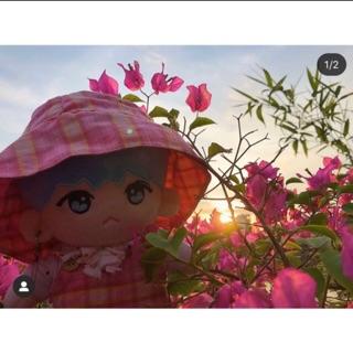 Nhượng BobiGi – Doll Fansite BTS