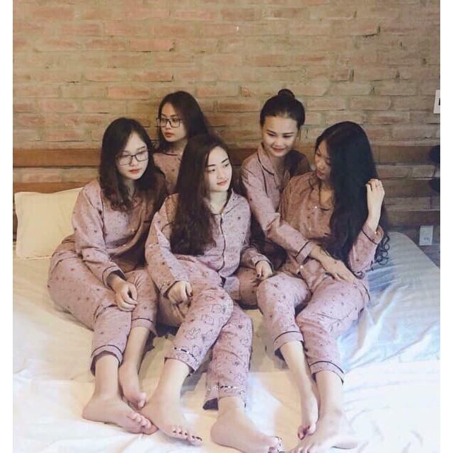 Bộ pijama dài tay bảng màu mới nhất