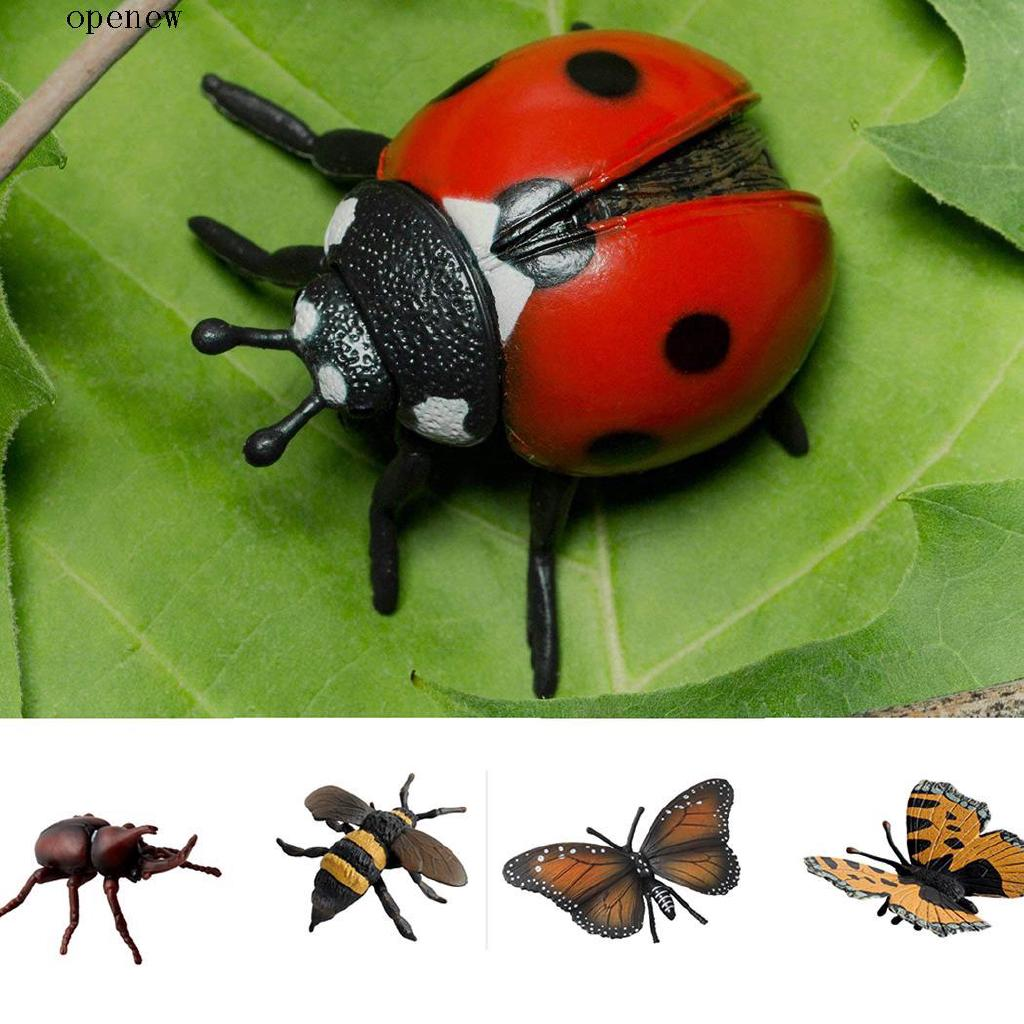 op Kids Realistic Toy Simulated Insect Toy Education Model Tool
