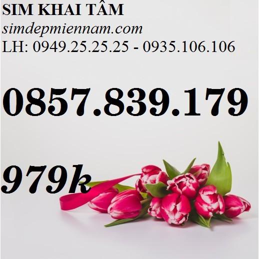 SIM VINAPHONE PHONG THỦY ĐẸP,TAM HOA, CẶP GÁNH, LẶP, ĐẢO ĐẸP, VIP 0857.839.179
