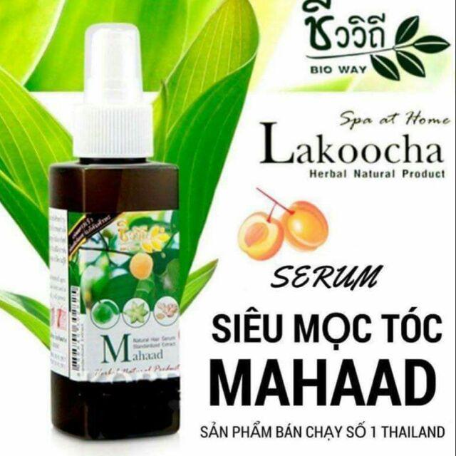 [HOT] Tinh Dầu Serum Xịt Mọc Thảo Tóc Cấp Tóc Sau 7 Ngày Thailand Lakocho Herbal Hair (Hàng Chuẩn) [MUA NGAY]