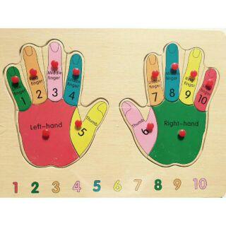 Bộ núm gỗ bàn tay và bàn chân