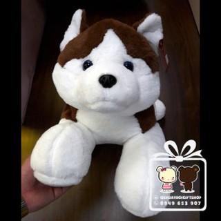 Chó Husky Vnxk 2