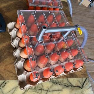Bộ tay hút trứng công nghiệp EL41 (4 tay – 1 máy)